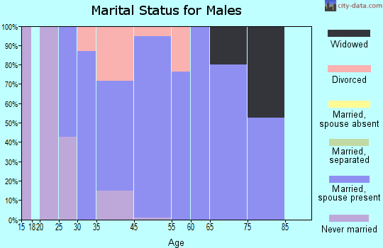 West Canton marital status for males
