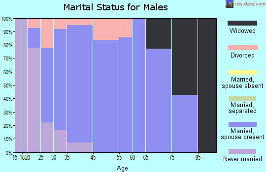 Bloomdale marital status for males