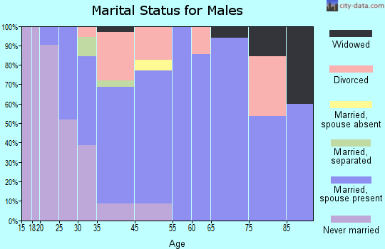 Brimfield marital status for males