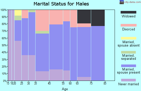 South Zanesville marital status for males