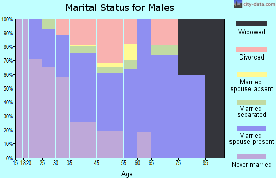 Channel Islands Beach marital status for males
