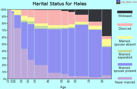 Salem marital status for males