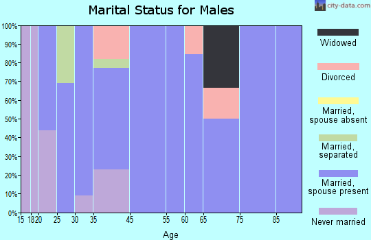 Aynor marital status for males