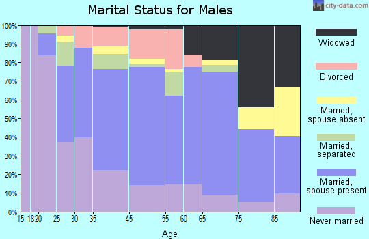 Laurens marital status for males
