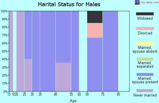 Iron Horse marital status for males