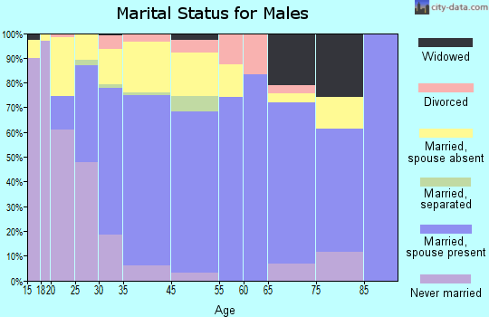 King City marital status for males