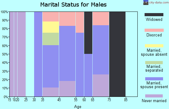 Lake of the Woods marital status for males