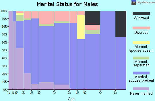 Plainview marital status for males