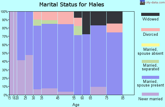 Denver City marital status for males