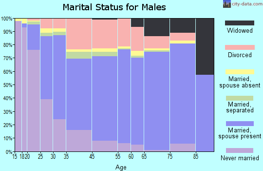 Haltom City marital status for males