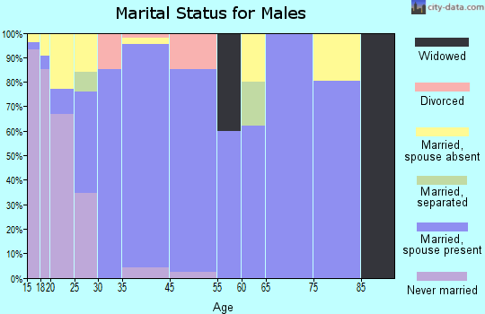 Homestead Meadows South marital status for males