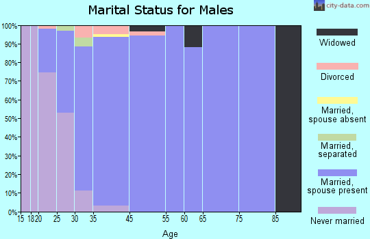 North Logan marital status for males