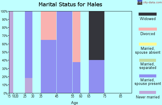 Timber Lakes marital status for males