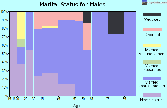Graniteville-East Barre marital status for males