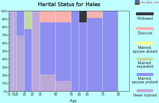 Basye-Bryce Mountain marital status for males