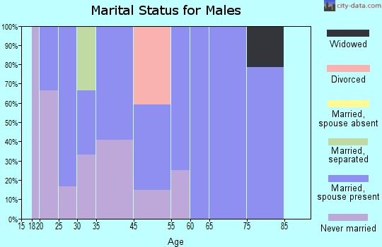 Boones Mill marital status for males
