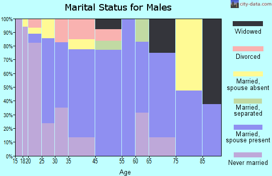 Emory-Meadow View marital status for males