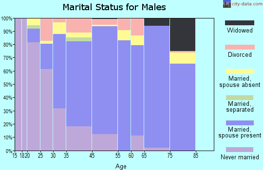 North Springfield marital status for males