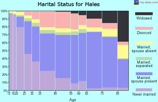 Roanoke marital status for males
