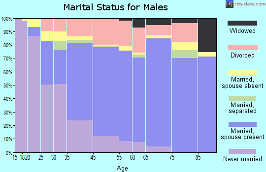 Bryn Mawr-Skyway marital status for males