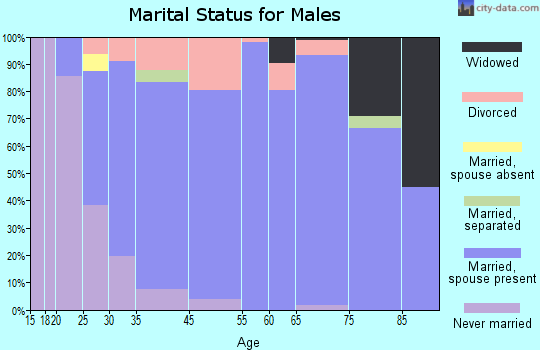 Clarkston Heights-Vineland marital status for males