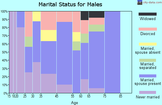 Matewan marital status for males