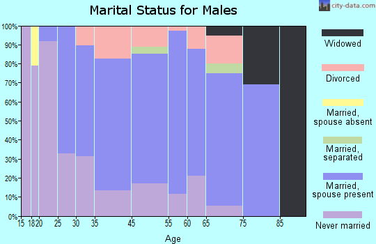 Summersville marital status for males
