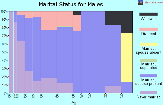 Baldwin marital status for males