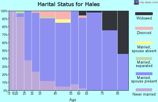 Rib Mountain marital status for males