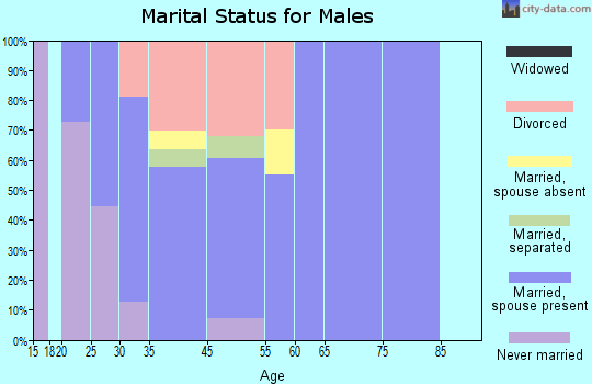 Fort Bridger marital status for males