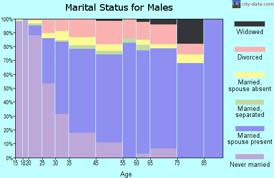 Vincent marital status for males