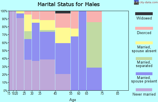 Mountain Village marital status for males