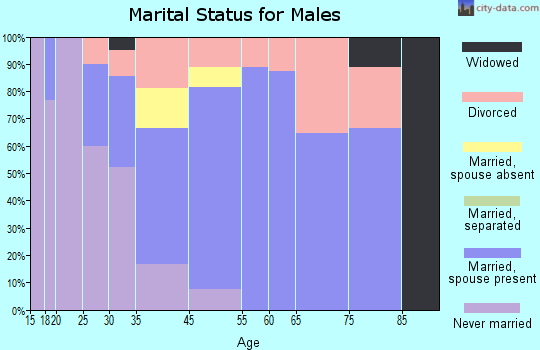 Saguache marital status for males