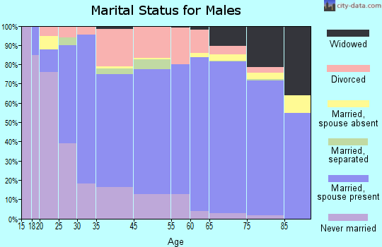 Bayonet Point marital status for males