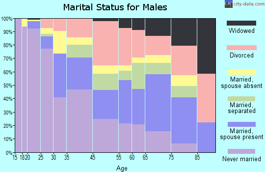 Brownsville marital status for males