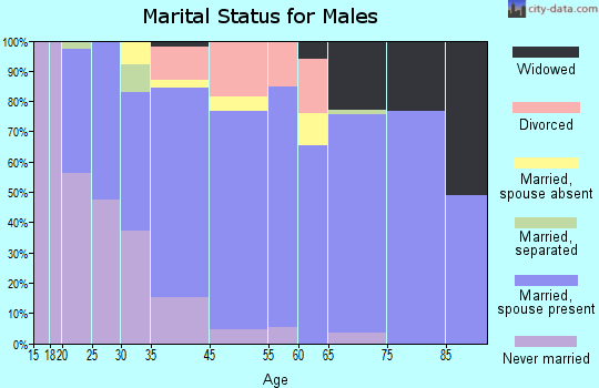 Fort Myers Shores marital status for males
