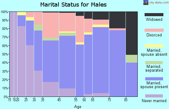 Ormond-By-The-Sea marital status for males