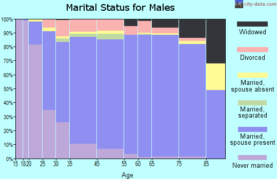 Palm Coast marital status for males