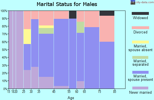 Palm Shores marital status for males