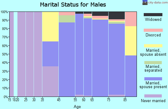 The Villages marital status for males