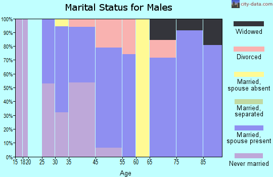 Avondale Estates marital status for males