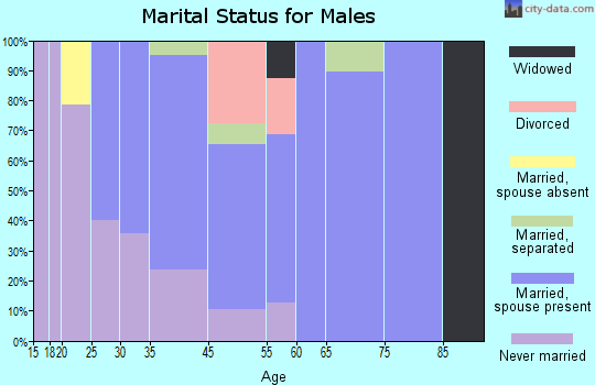 Lake Park marital status for males