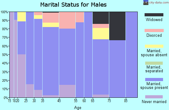 Ashton marital status for males
