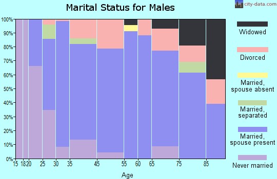 Filer marital status for males