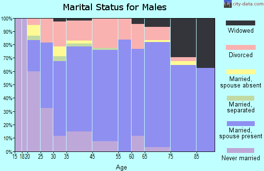 Jerome marital status for males