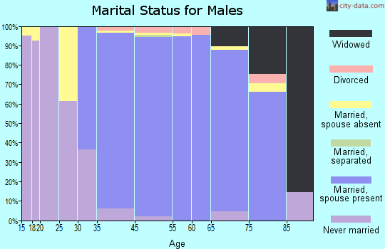 Burr Ridge marital status for males