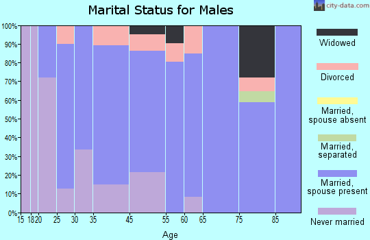 Johnston City marital status for males