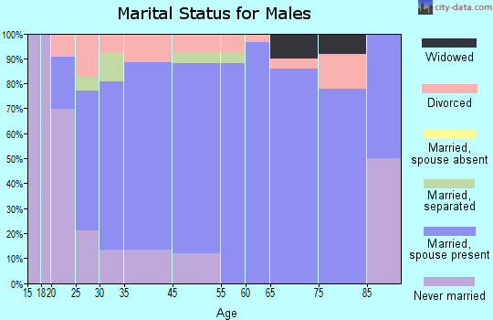 Manito marital status for males