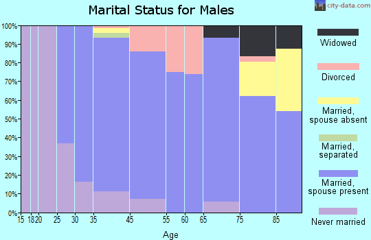 Metamora marital status for males