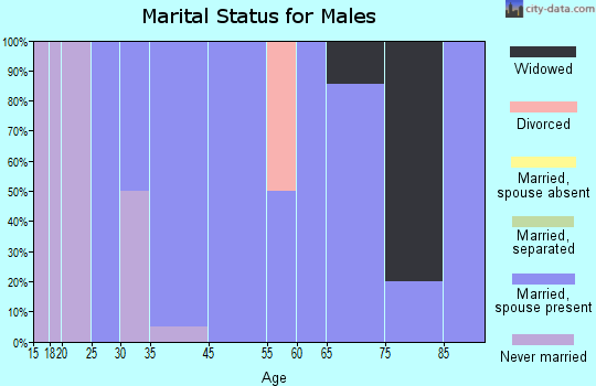 Palmer marital status for males